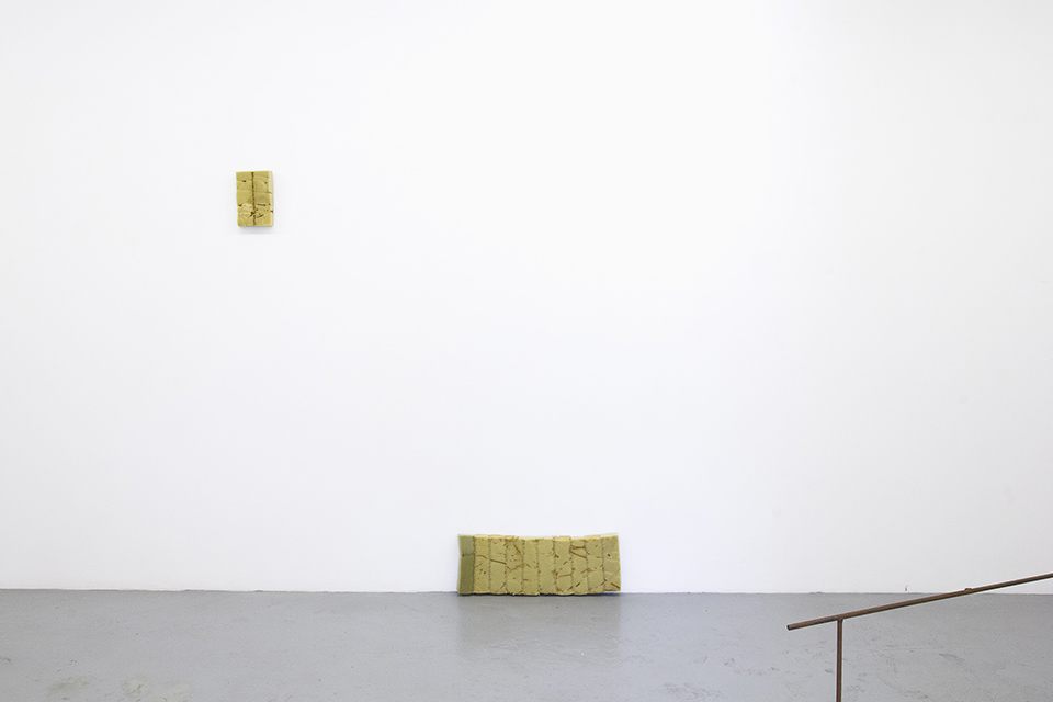 Bronwyn Katz, Groenpunt (2016) | Installation view, blank projects 5